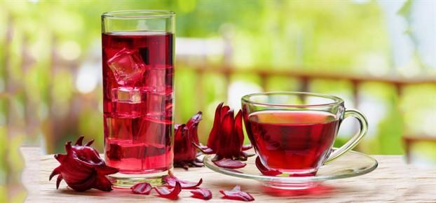 Giải rượu với trà Bụp Giấm
