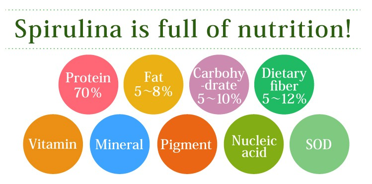 While synthetic supplements have only major ingredients for several kinds, Spirulina 100% has nutrition ingredients abundantly